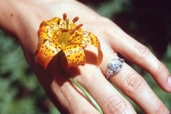 Flower on hand and engagement ring